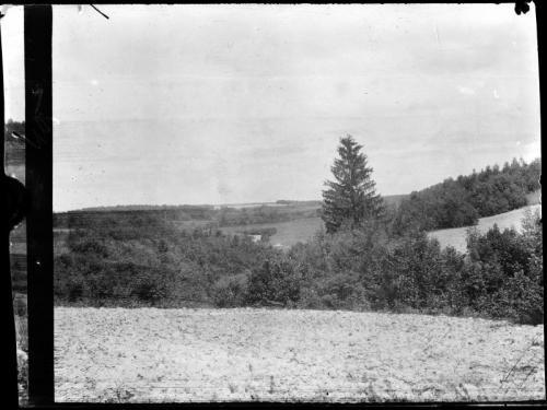 HCz.13(36) Wawóz z jodłą, Rekowicze