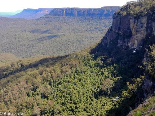 Las Blue Mountains National Park